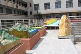 屏东中学地理园